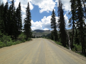Nearing treeline on Cottonwood Pass.